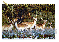 Fallow Deer In England Carry-all Pouch