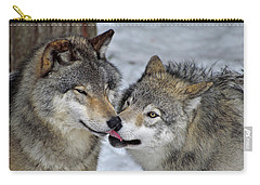 Carry-all Pouch featuring the photograph Familiar by Tony Beck