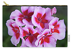 Carry-all Pouch featuring the photograph Family by Sherry Hallemeier