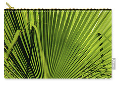 Fan Palm View 2 Carry-all Pouch by James Gay