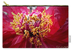 Fancy  Carry-all Pouch by Christy Ricafrente
