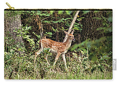 Fawn In The Woods Carry-all Pouch