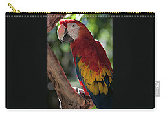 Feathered Rainbow Carry-all Pouch