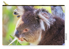 Carry-all Pouch featuring the photograph Feed Me, Yanchep National Park by Dave Catley