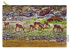 Carry-all Pouch featuring the photograph Feeding Mountain Sheep by Robert Bales