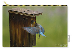 Feeding Time For Bluebirds Carry-all Pouch