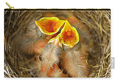 Baby Swan Photographs Carry-All Pouches