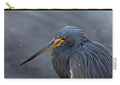 Florida Bird Carry-all Pouches