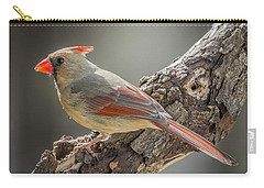 Female Cardinal Img 1 Carry-all Pouch