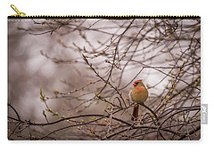 Carry-all Pouch featuring the photograph Female Cardinal In Spring 2017 by Terry DeLuco