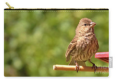 Female Crossbill At Feeder      Summer      Indiana Carry-all Pouch by Rory Cubel