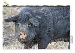 Carry-all Pouch featuring the photograph Female Hog by James BO Insogna