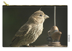 Female House Finch On Feeder Carry-all Pouch