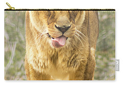 Carry-all Pouch featuring the photograph Female Lion by Ayasha Loya