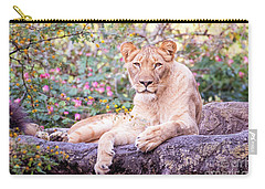 Female Lion Resting Carry-all Pouch by Stephanie Hayes