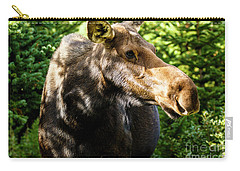 Female Moose At Jackson Hole Carry-all Pouch
