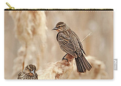 Carry-all Pouch featuring the photograph Female Red-wing Blackbirds by Jennie Marie Schell