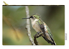 Female Ruby-throated Hummingbird On Branch Carry-all Pouch