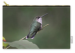 Hummingbird Carry-all Pouch by William Tanneberger