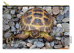 Female Russian Tortoise Carry-all Pouch