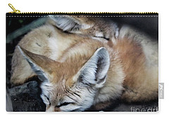 Fennec Foxes Carry-all Pouch