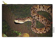 Fer-de-lance, Botherops Asper Carry-all Pouch