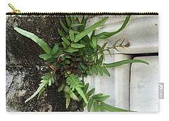 Carry-all Pouch featuring the painting Fern by Kim Nelson