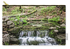 Fern Spring 5 Carry-all Pouch by Ryan Weddle