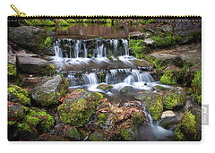 Fern Springs Carry-all Pouch by Ralph Vazquez