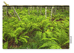 Ferns And Birch In Soft Light Carry-all Pouch