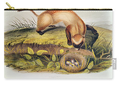 Ferrets Carry-all Pouches