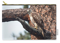 Ferruginous Hawk Carry-all Pouch