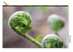 Fiddleheads Carry-all Pouch