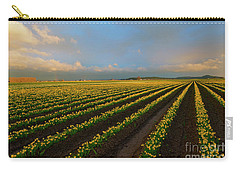 Carry-all Pouch featuring the photograph Fields Of Yellow by Mike Dawson
