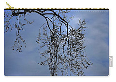 Carry-all Pouch featuring the photograph Filigree From On High by Skip Willits