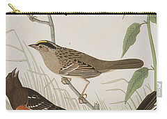 Finches Carry-all Pouch by John James Audubon