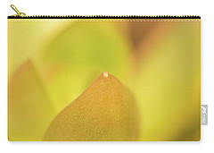 Carry-all Pouch featuring the photograph Find Focus In Nature by Ana V Ramirez