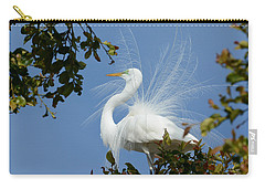 Carry-all Pouch featuring the photograph Finery by Fraida Gutovich