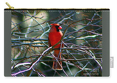 Carry-all Pouch featuring the photograph First Day Of Summer by Barbara S Nickerson