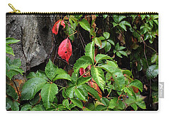 First Signs Of Fall Approaching Carry-all Pouch by Natalie Ortiz