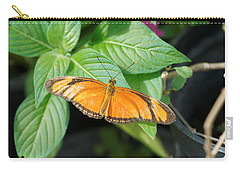Carry-all Pouch featuring the photograph Flambeau Butterfly by Paul Gulliver