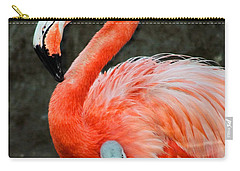 Flamingo And Baby Carry-all Pouch by Anthony Jones