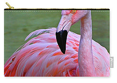 Flamingo  Carry-all Pouch