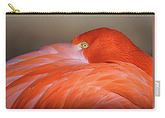 Flamingo Carry-all Pouch by Michael Hubley