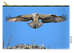 Carry-all Pouch featuring the photograph Flegeling Osprey by Debbie Stahre