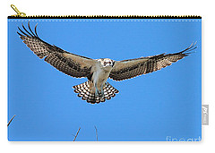 Carry-all Pouch featuring the photograph Flight Practice Over The Nest by Debbie Stahre