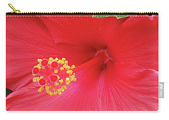 Floral Beauty 2 Carry-all Pouch by Vickie G Buccini