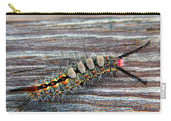 Florida Caterpillar Carry-all Pouch