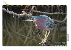 Florida Green Heron Carry-all Pouch