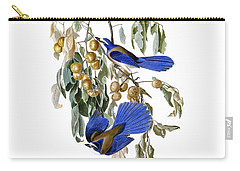 Florida Jay And Wild Persimmon Tree Carry-all Pouch by Pg Reproductions